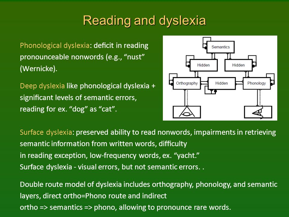 Reading and dyslexia Phonological dyslexia: deficit in reading pronounceable nonwords (e.g., nust (Wernicke).