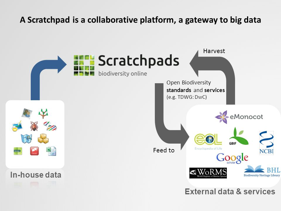 A Scratchpad is a collaborative platform, a gateway to big data