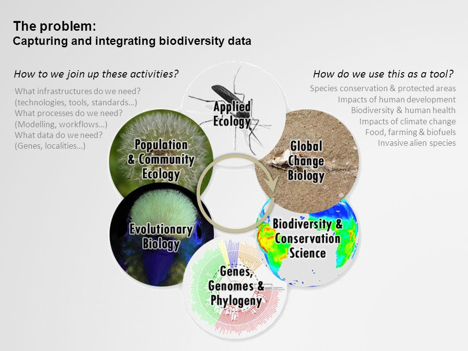 The problem: Capturing and integrating biodiversity data