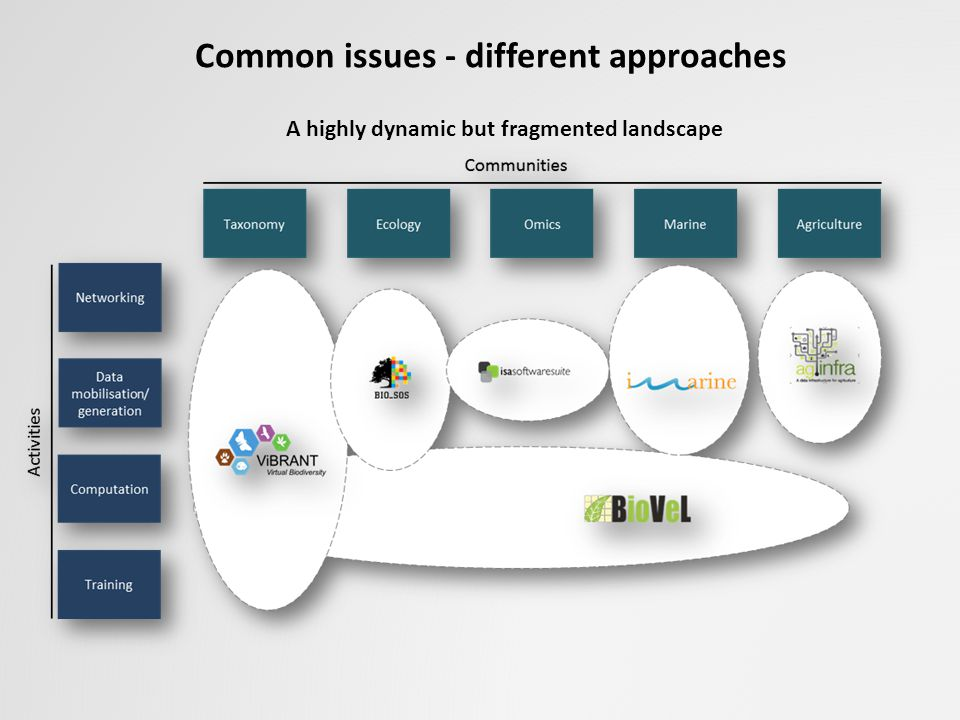 Common issues - different approaches