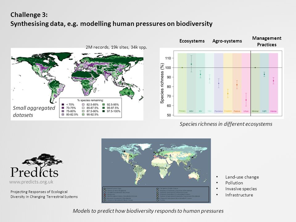 Models to predict how biodiversity responds to human pressures
