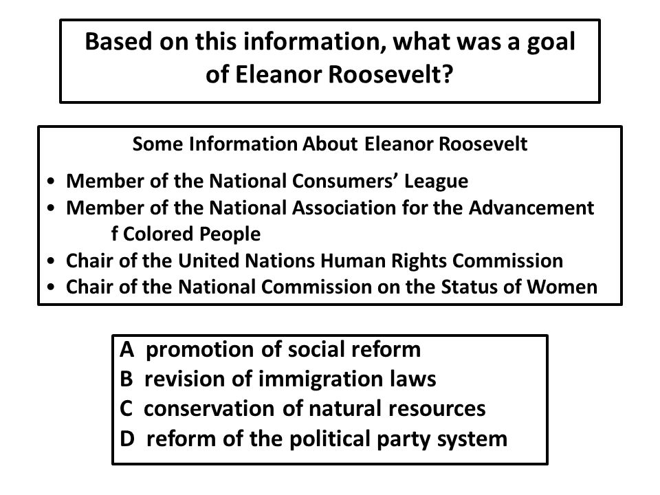 Based on this information, what was a goal of Eleanor Roosevelt
