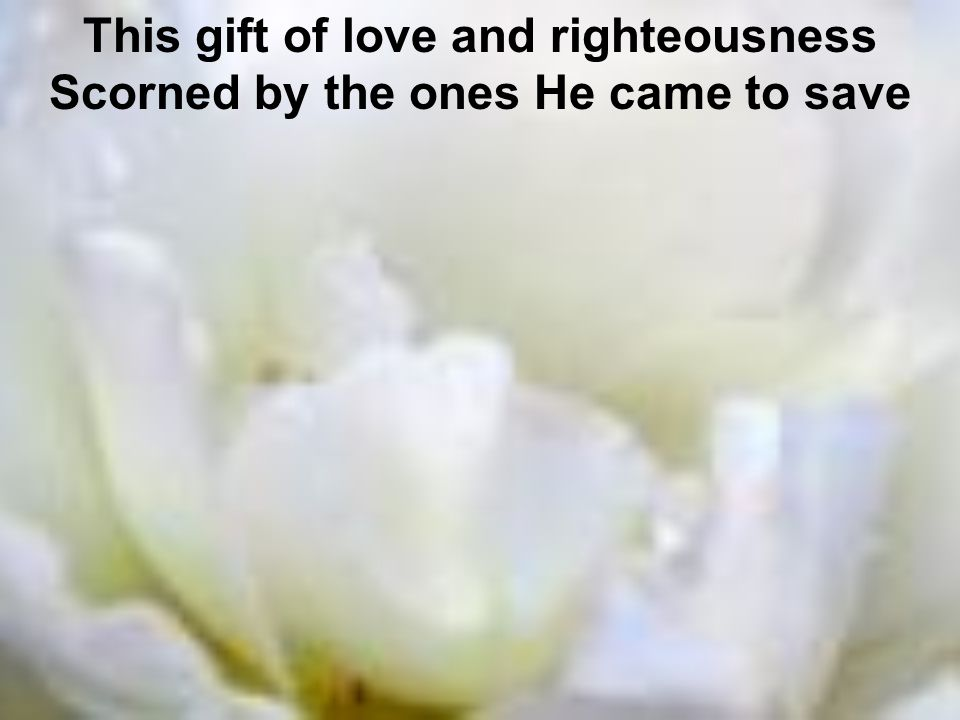 This gift of love and righteousness Scorned by the ones He came to save