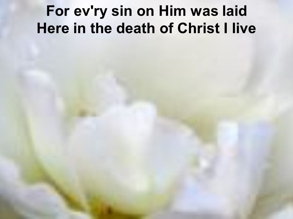 For ev ry sin on Him was laid Here in the death of Christ I live