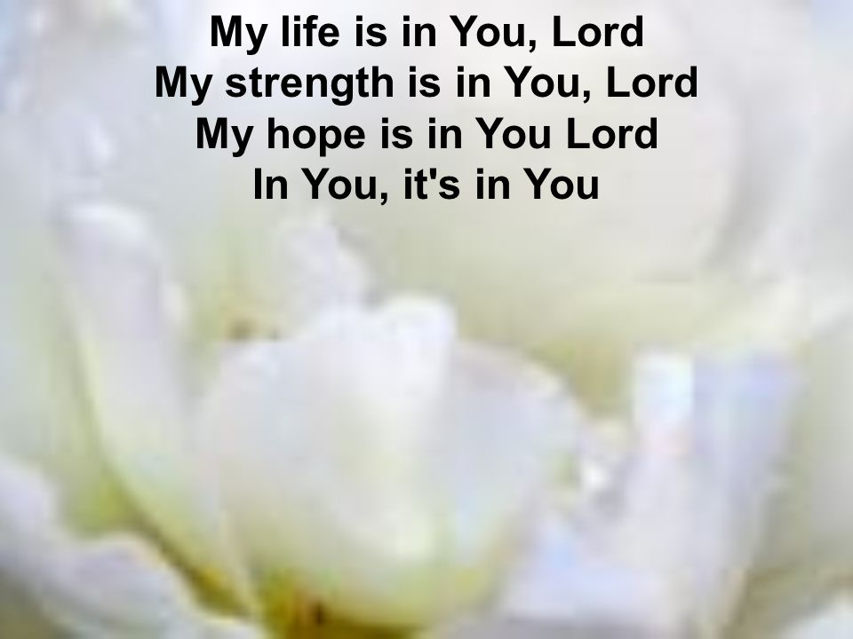 My life is in You, Lord My strength is in You, Lord My hope is in You Lord In You, it s in You