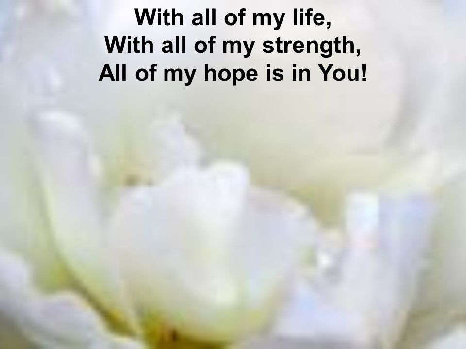 With all of my life, With all of my strength, All of my hope is in You!