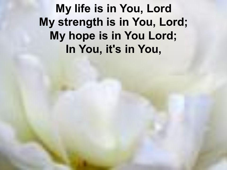 My life is in You, Lord My strength is in You, Lord; My hope is in You Lord; In You, it s in You,