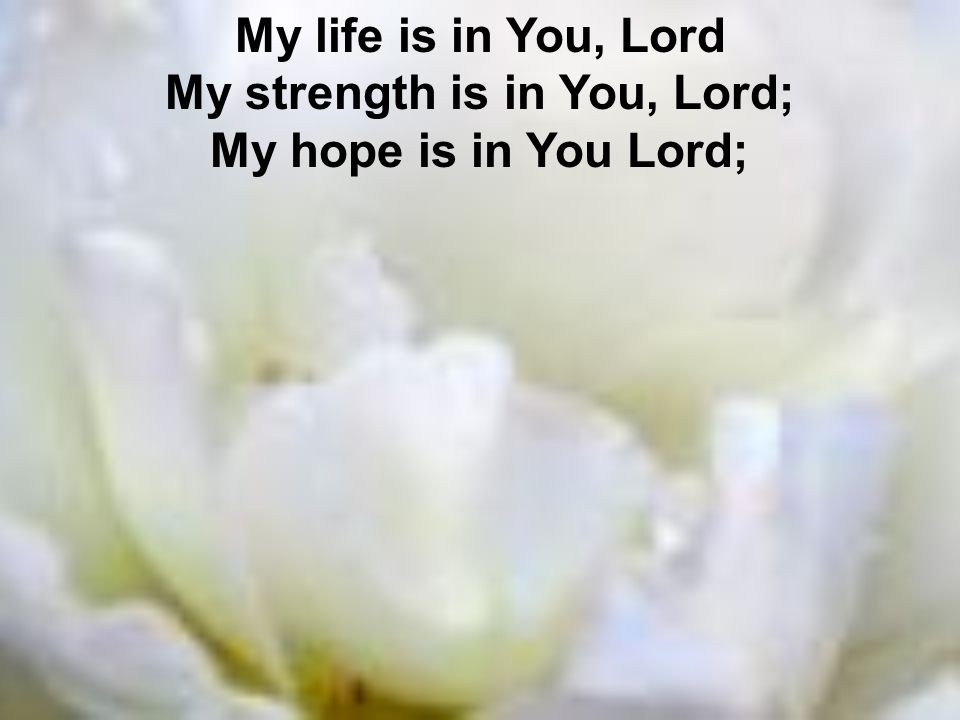 My life is in You, Lord My strength is in You, Lord; My hope is in You Lord;