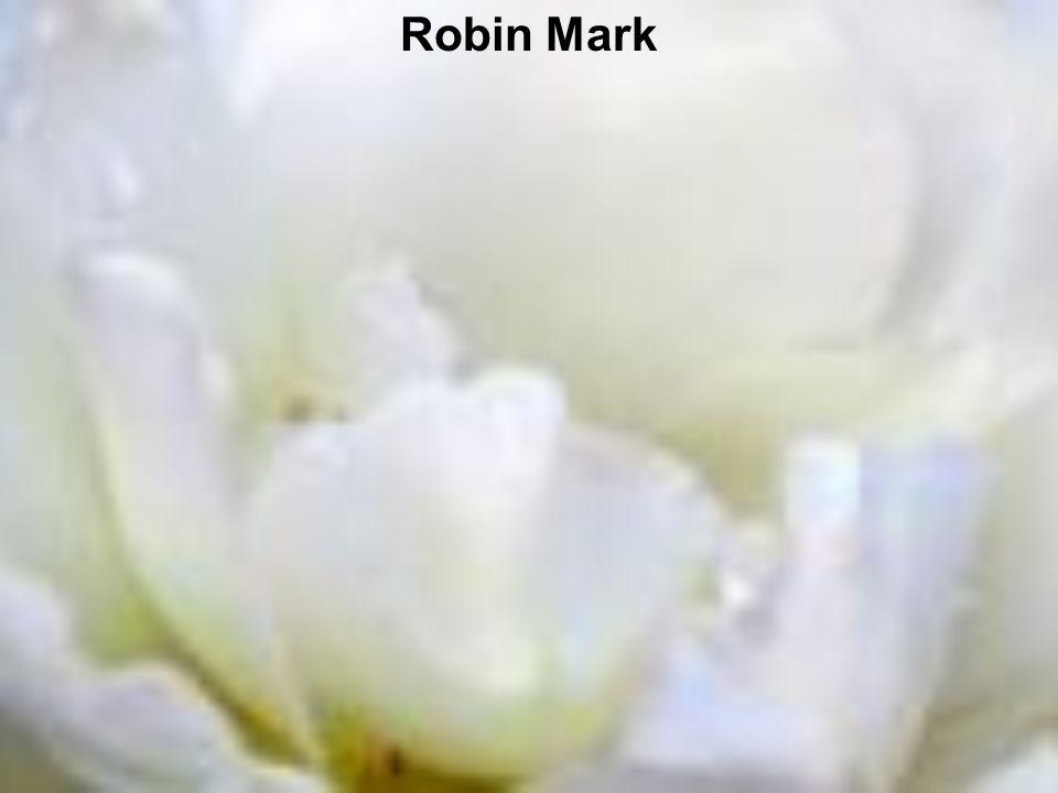 Robin Mark