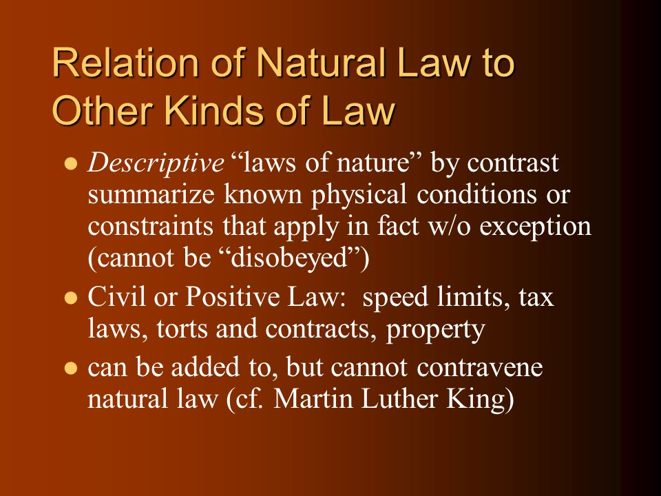 Relation of Natural Law to Other Kinds of Law