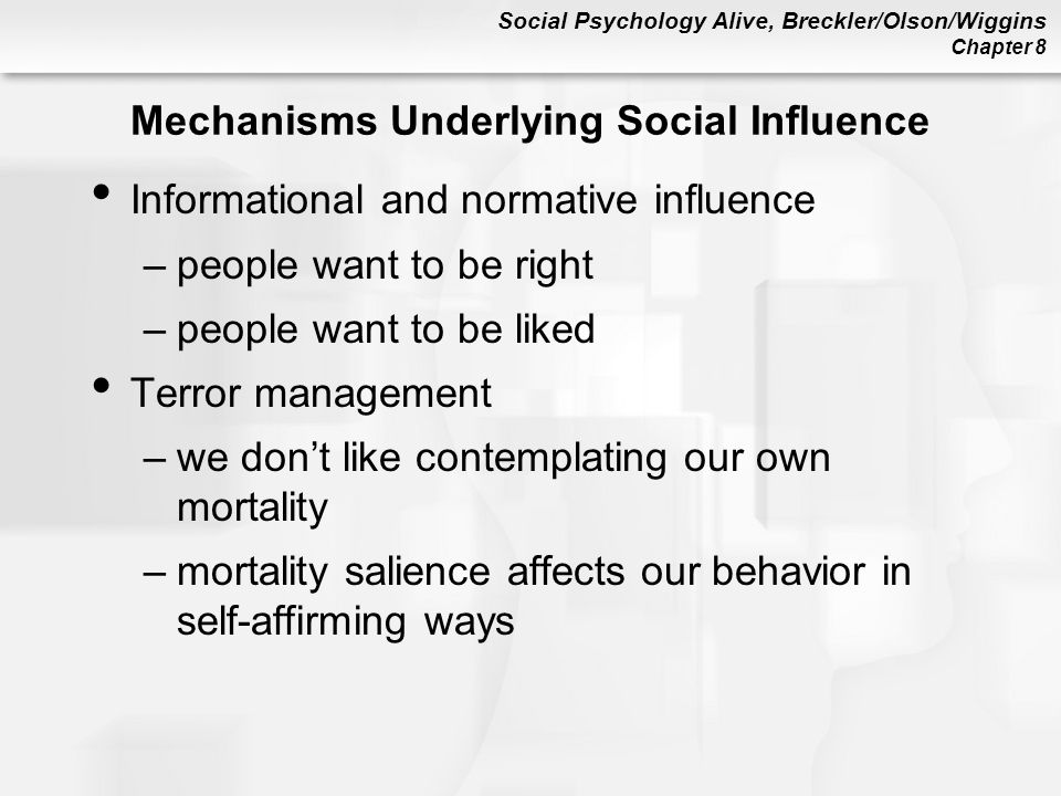Mechanisms Underlying Social Influence