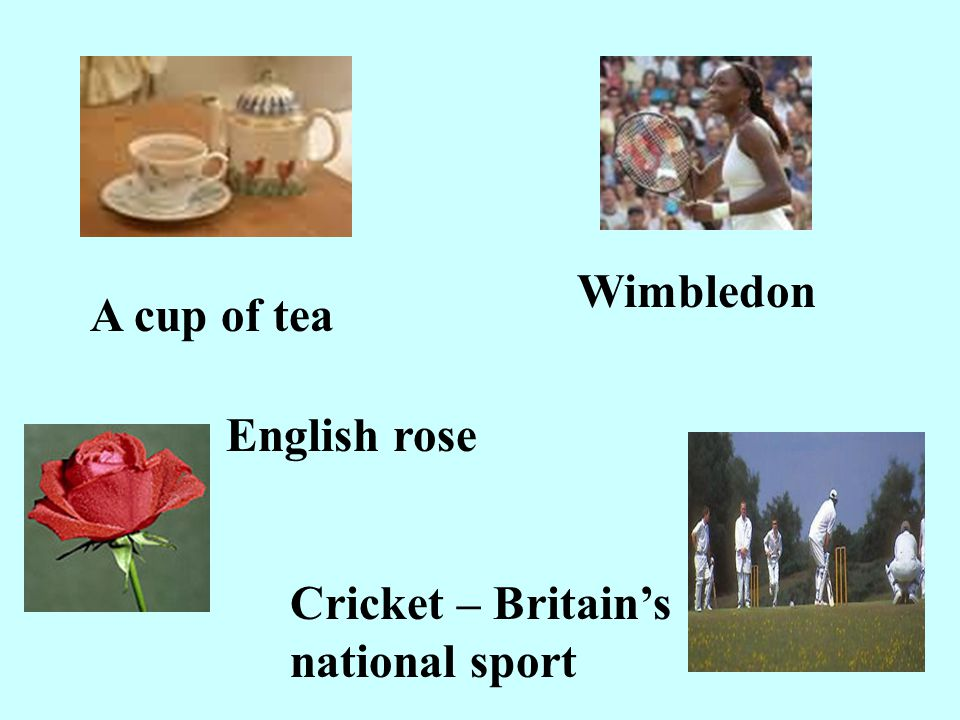 Wimbledon A cup of tea English rose Cricket – Britain's national sport