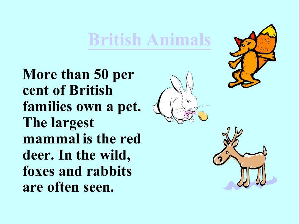 British Animals