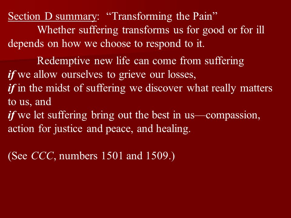 Section D summary: Transforming the Pain