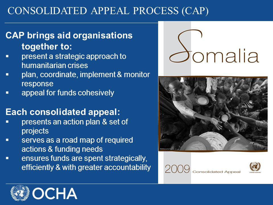 CONSOLIDATED APPEAL PROCESS (CAP)