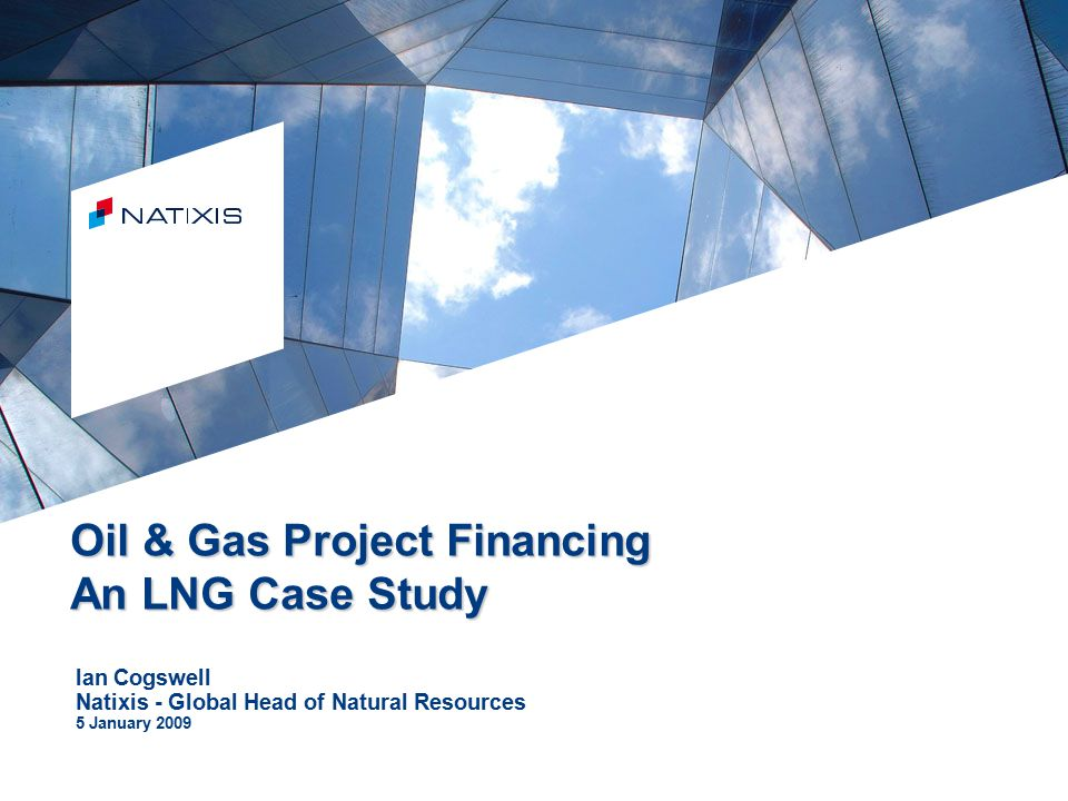 the natural gas case In the case of natural gas and fuel oil, it is commonly accepted that a high degree of fungibility exists in the industrial sector this in turn, assures that the extent of the price rise after .