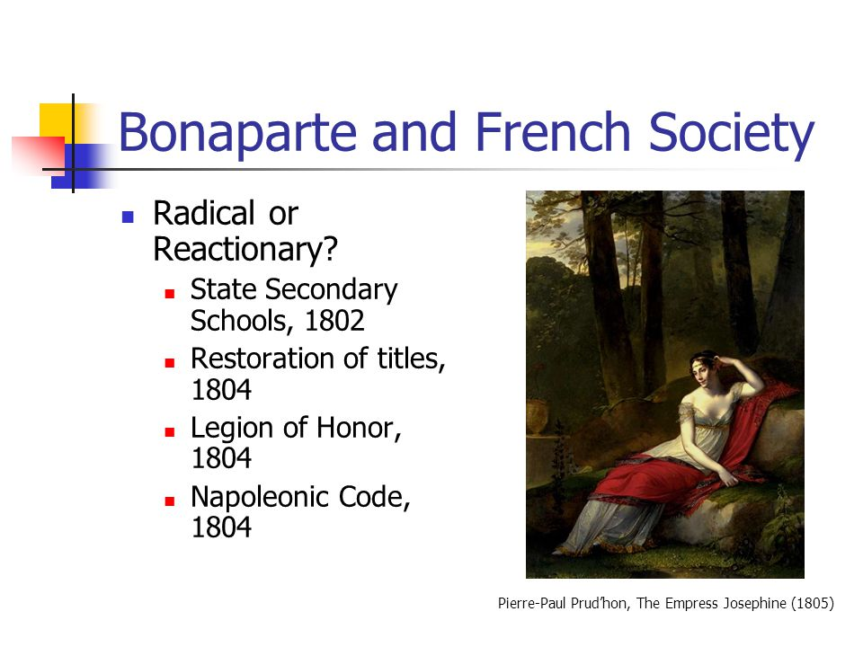 Bonaparte and French Society