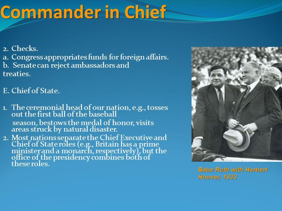 Commander in Chief 2. Checks.
