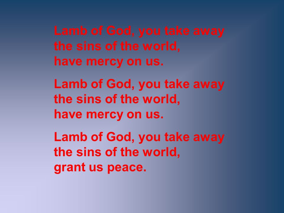 Lamb of God, you take away the sins of the world, have mercy on us.