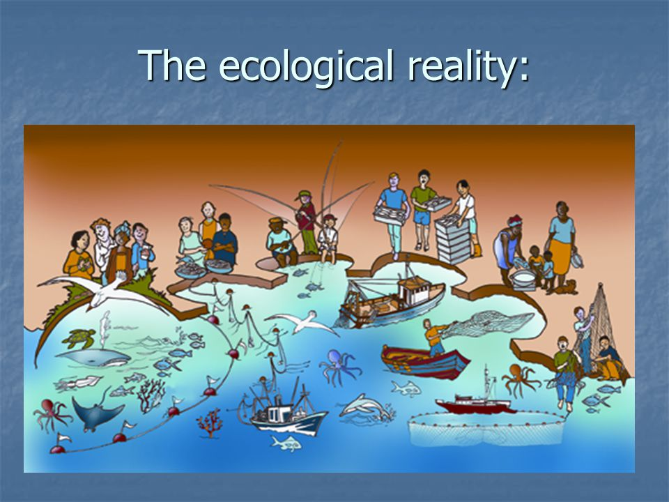 The ecological reality: