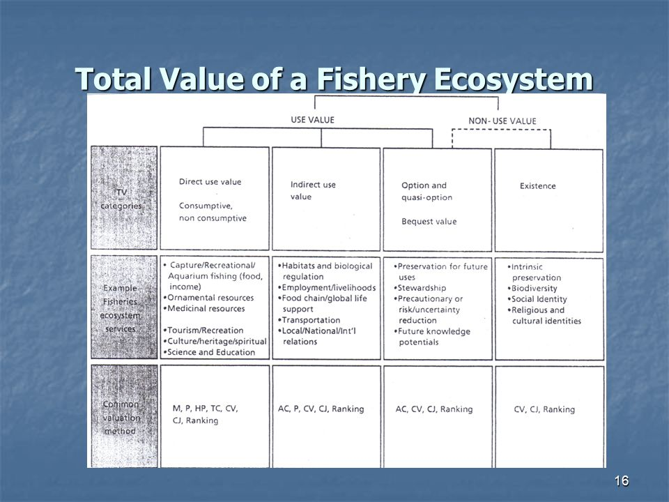 Total Value of a Fishery Ecosystem