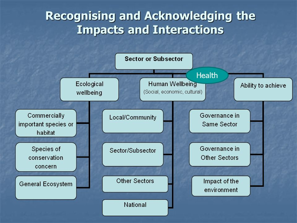 Recognising and Acknowledging the Impacts and Interactions