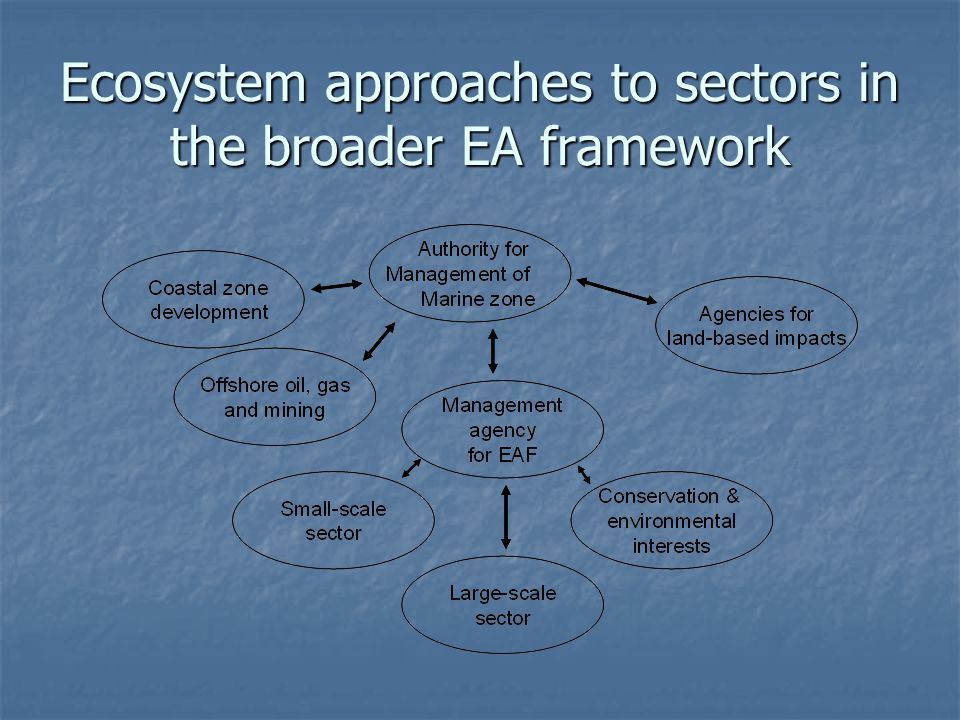 Ecosystem approaches to sectors in the broader EA framework