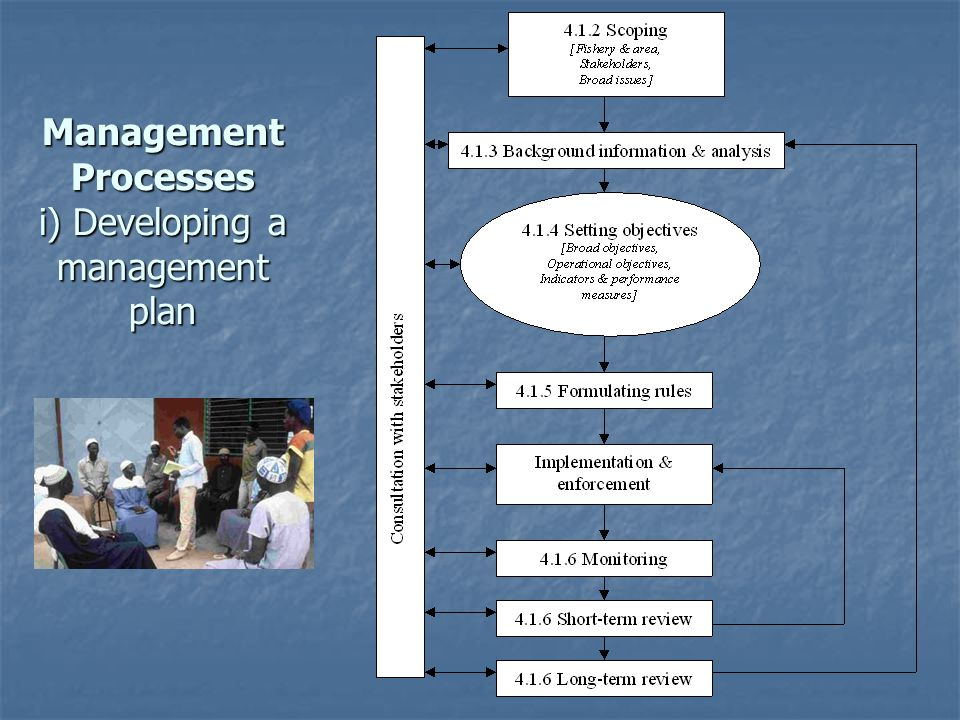 Management Processes i) Developing a management plan