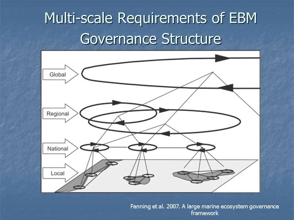 Multi-scale Requirements of EBM Governance Structure