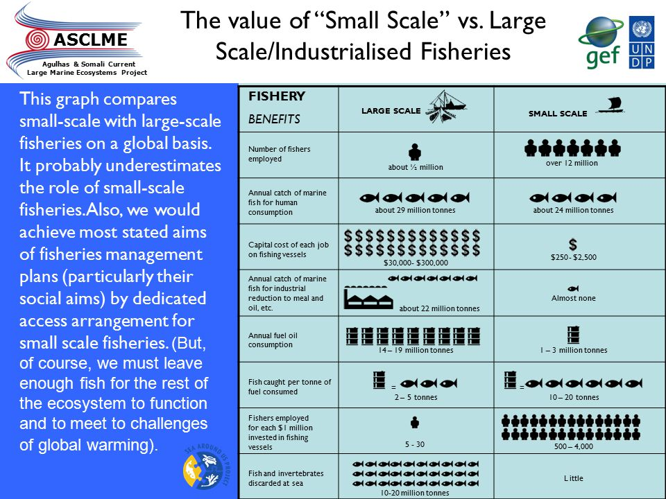 The value of Small Scale vs. Large Scale/Industrialised Fisheries
