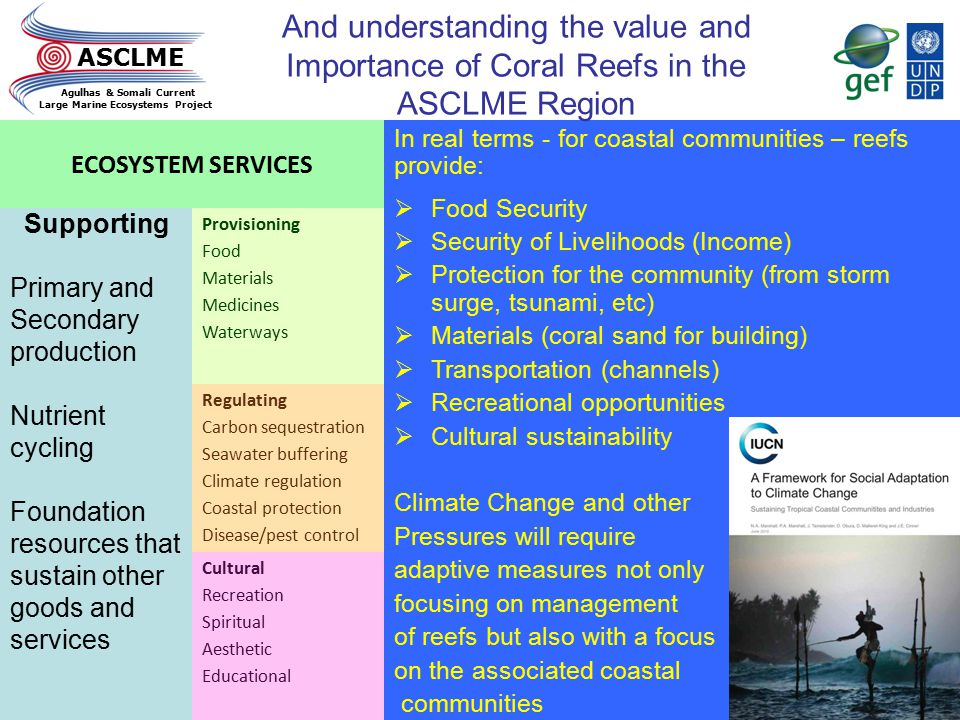 And understanding the value and Importance of Coral Reefs in the ASCLME Region