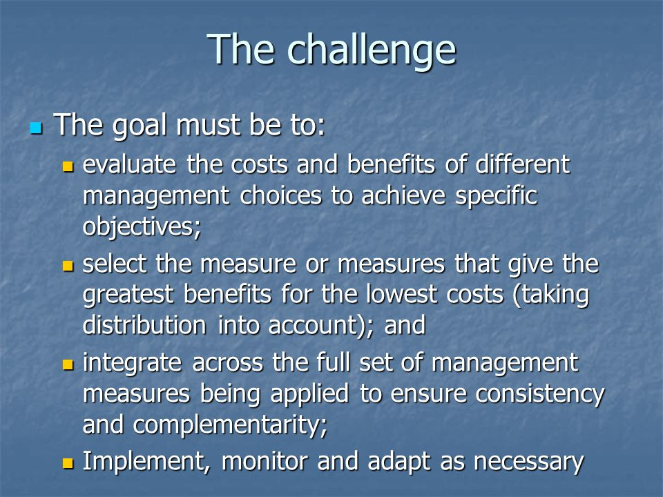 The challenge The goal must be to: