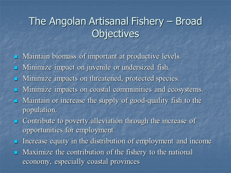 The Angolan Artisanal Fishery – Broad Objectives