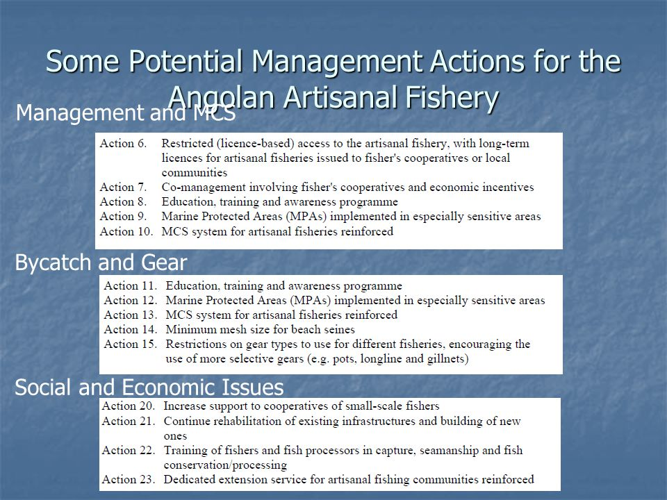 Some Potential Management Actions for the Angolan Artisanal Fishery