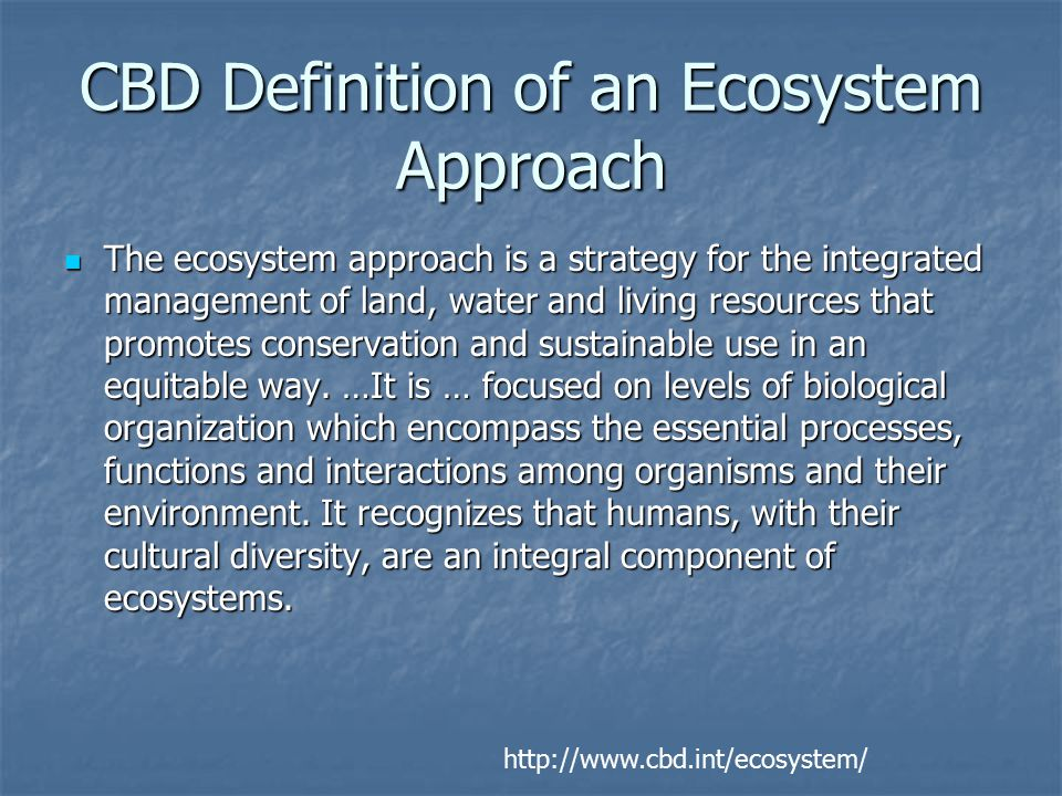 CBD Definition of an Ecosystem Approach