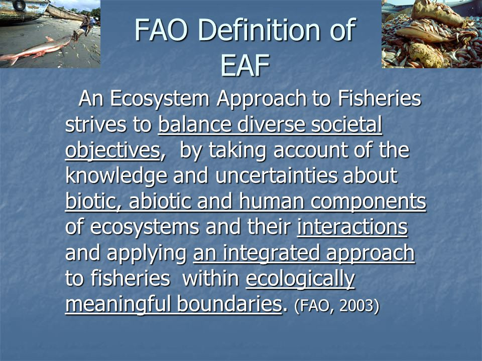 FAO Definition of EAF