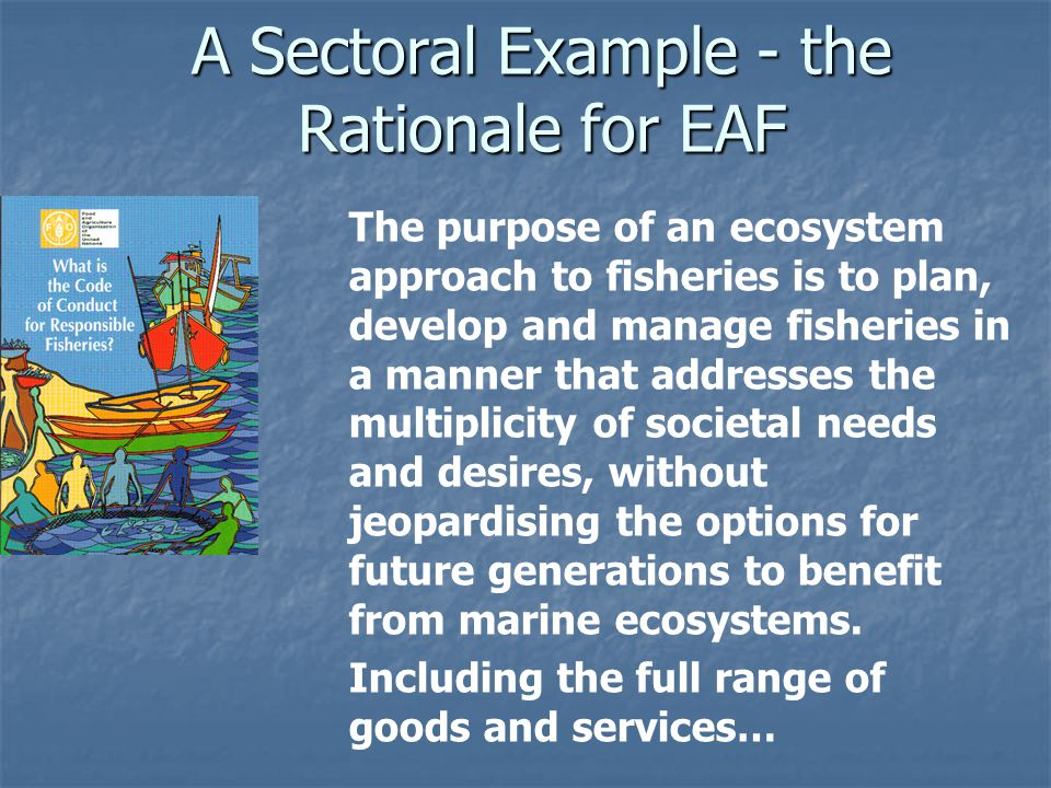 A Sectoral Example - the Rationale for EAF