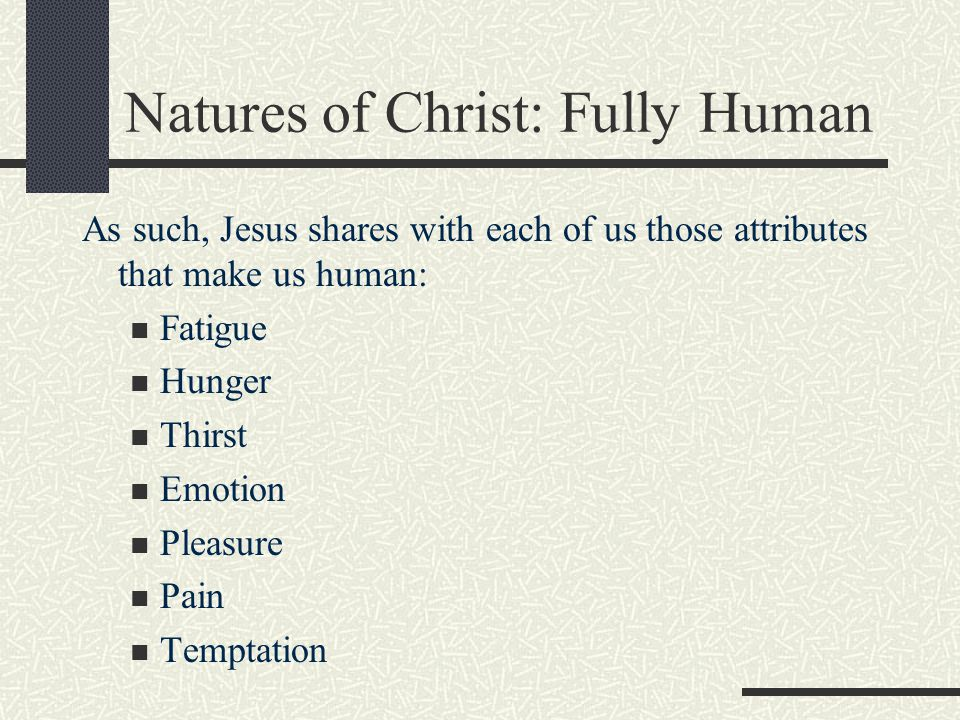 Natures of Christ: Fully Human