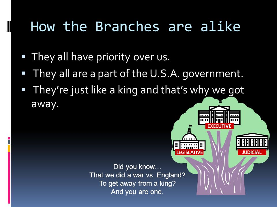 How the Branches are alike