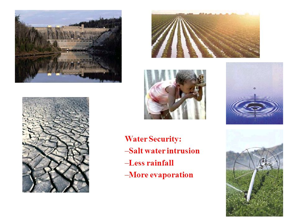 Water Security: Salt water intrusion Less rainfall More evaporation