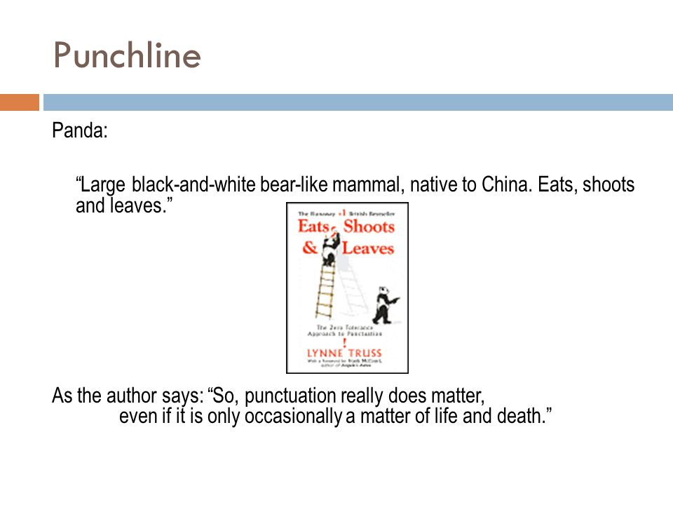 Punchline Panda: Large black-and-white bear-like mammal, native to China. Eats, shoots and leaves.