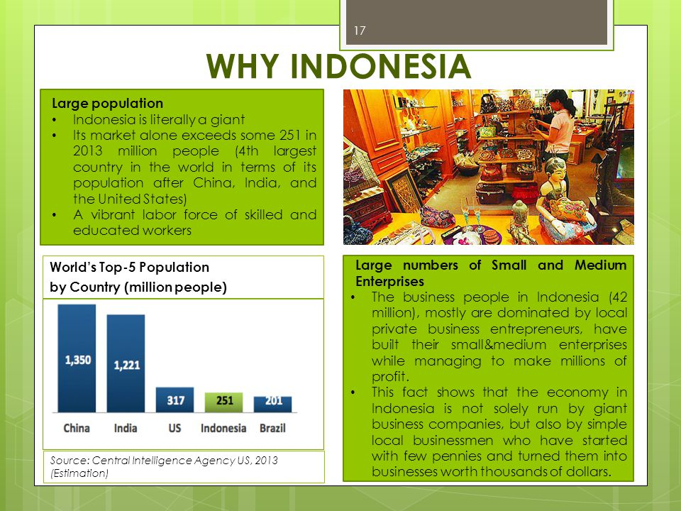 WHY INDONESIA Large population Indonesia is literally a giant