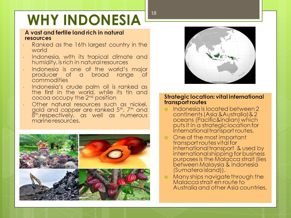 WHY INDONESIA A vast and fertile land rich in natural resources