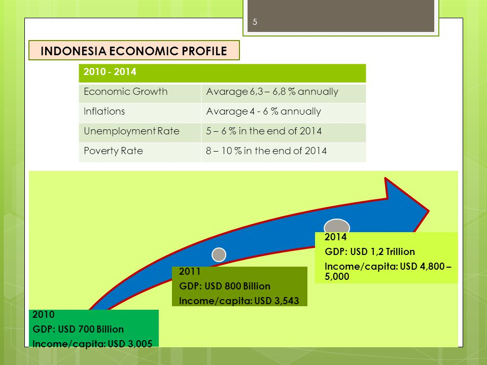 INDONESIA ECONOMIC PROFILE