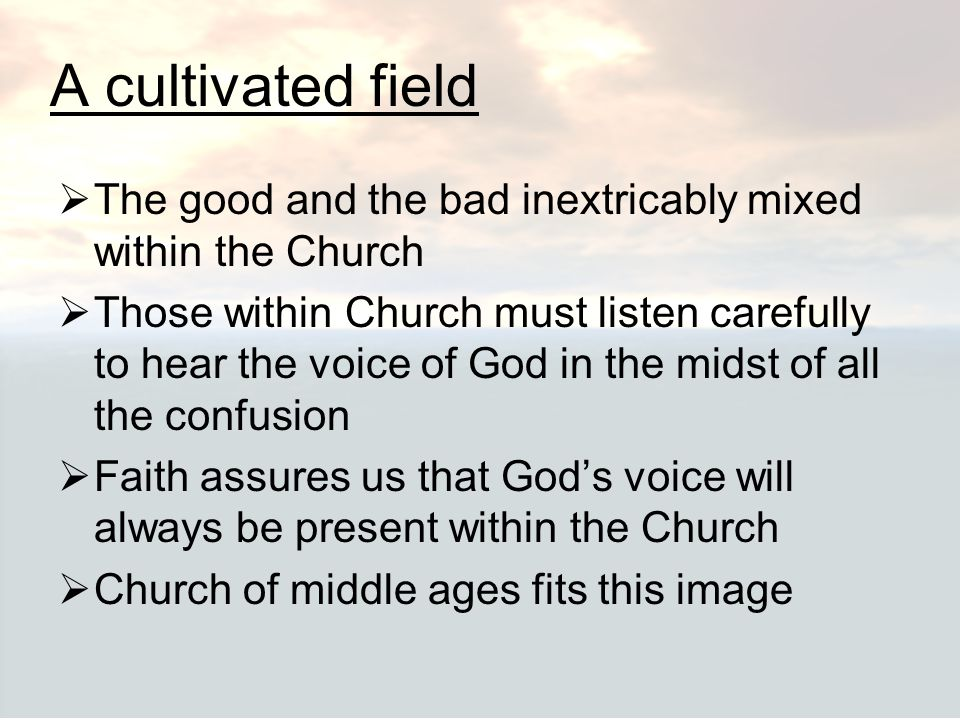 A cultivated field The good and the bad inextricably mixed within the Church.