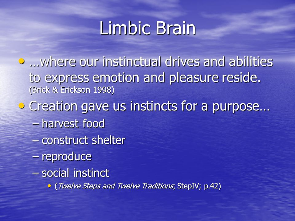 Limbic Brain …where our instinctual drives and abilities to express emotion and pleasure reside. (Brick & Erickson 1998)
