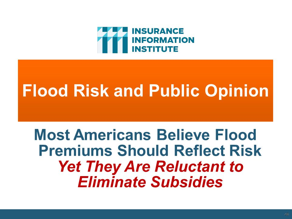 Flood Risk and Public Opinion