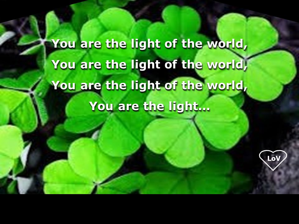 You are the light of the world, You are the light...