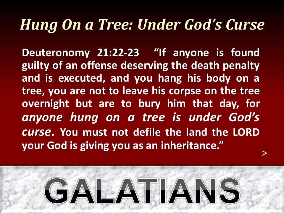 Hung On a Tree: Under God's Curse