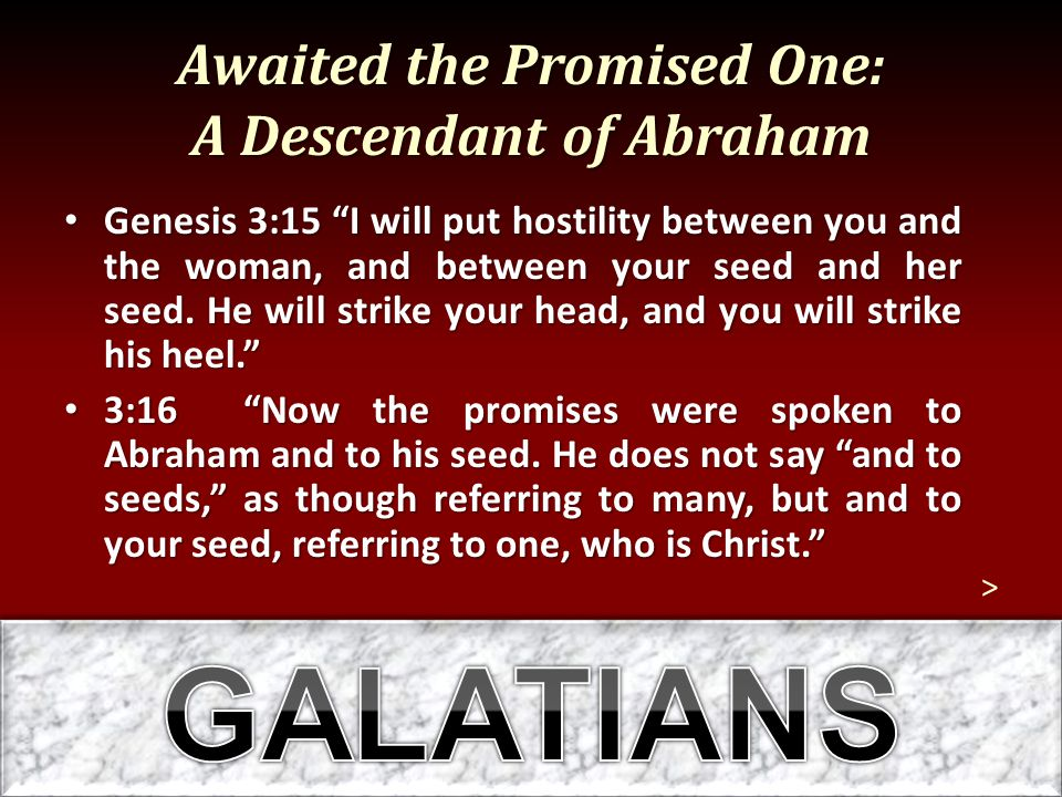 Awaited the Promised One: A Descendant of Abraham